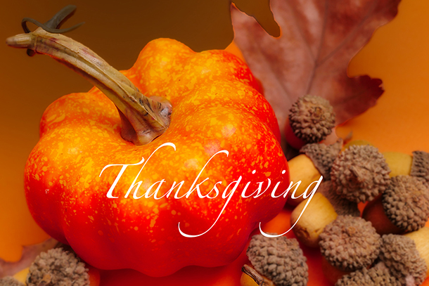 Thanksgiving Handmade Greeting Cards